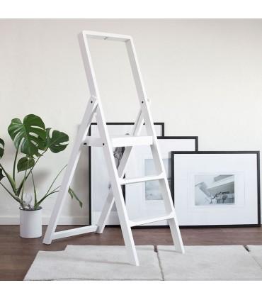 Step Ladder